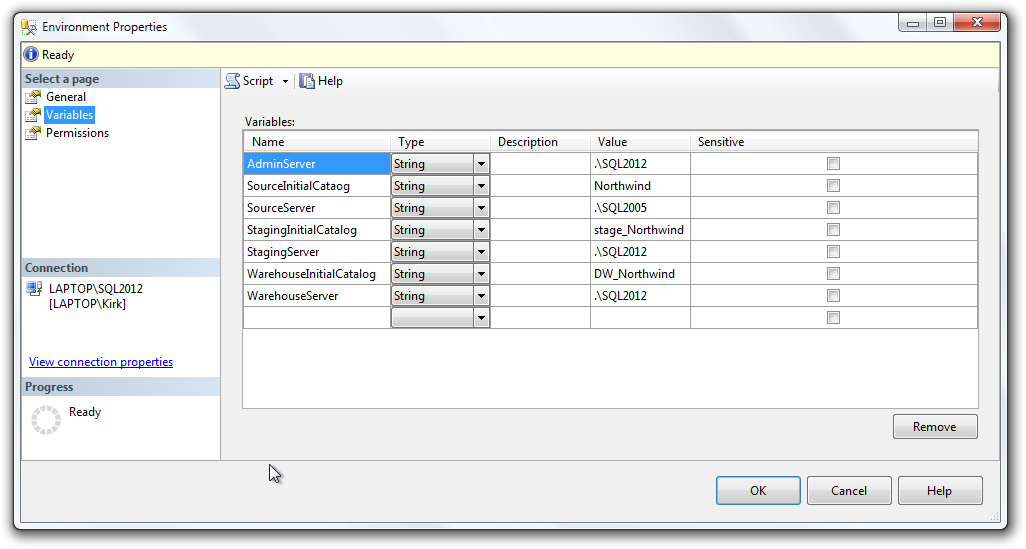 SSIS Development Environment variables